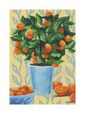 Opulent Citrus II