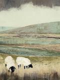 Open Meadow II