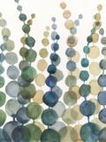 Pompom Botanical I Reproduction d'art par Megan Meagher
