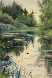 Landscape Study of Mora