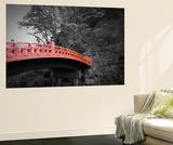 Nikko Red Bridge