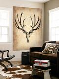 Vintage Deer Scull