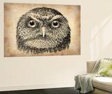 Vintage Owl Face