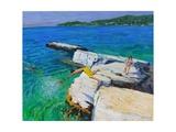 The Diver  Plates Rock  Skiathos  Greece  2015