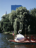 Boston Swan Boats