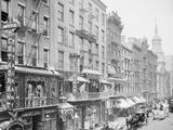 Mott Street  New York  NY