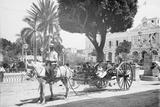 Matanzas Volanta  Large Wheeled Horse Drawn Tourist Coach