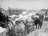 Snow Carts at the River after a Blizzard  New York