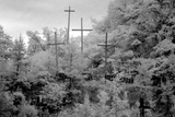 Rough Wooden Crosses and Peeling Signs Bearing Bible Scripture