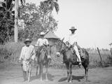 Cane Cutters on a Cuban Sugar Plantation