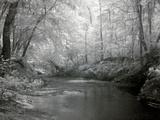 Rikard's Mill  Near Beatrice  Alabama