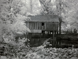 Rikard's Mill  Near Beatrice  Alabama