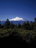 Mount Shasta - 14 162' - California's Highest
