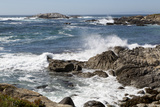 17-Mile Drive  Scenic Road Through Monterey  California