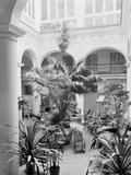 Courtyard  Hotel Florida  Havana  Cuba