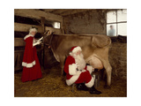 Santa Milks a Cow