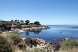 Road Through Pacific Grove and Pebble Beach