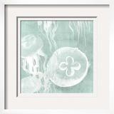 Spa Jellyfish II