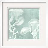 Spa Jellyfish IX