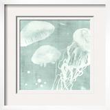 Spa Jellyfish VIII