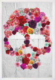 Bed of Roses Framed Art