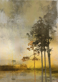 Beyond the Pines II