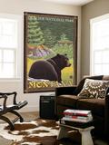 Black Bear in Forest  Glacier National Park  Montana