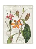 Vintage Flora III Ivory