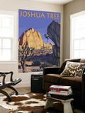 Joshua Tree National Park  California  Boulder Climber