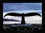 10th Anniversary (Whale)
