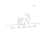 ACT TAC ATC TCA CTA - New Yorker Cartoon