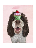 Springer Spaniel with Cupcake