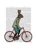 Rabbit on Bike
