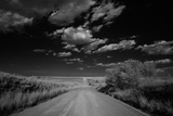 Black and White Landscape of a Rural Dirt Road
