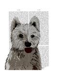 West Highland Terrier Plain