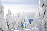 A Skier Stands Amid Snow Covered Trees at the Big White Ski Resort