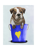 Bulldog Bucket of Love Blue