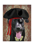 Black Labrador Pirate Dog