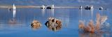 Mono Lake  Tufa Rock  Ca