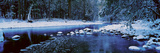 The Merced River in Winter  Yosemite National Park  California