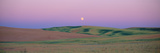 Moonrise over Pea Fields  the Palouse  Washington State