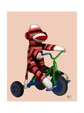 Sock Monkey Tricycle