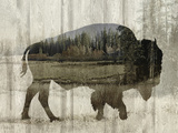 Camouflage Animals - Bison Giclée