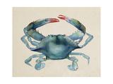 Sea Dweller III Reproduction d'art par Grace Popp