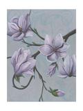Branches of Magnolia I