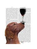 Red Setter Dog Au Vin Reproduction d'art par Fab Funky