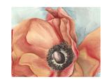 Watercolor Poppy I