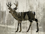 Camouflage Animals - Deer