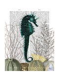 SeaHorse and Sea Urchins Reproduction d'art par Fab Funky