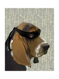 Ninja Basset Hound Dog